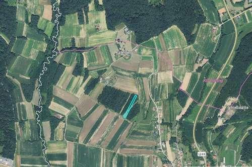Wald- & Wiesengrundstück für 2.700,-