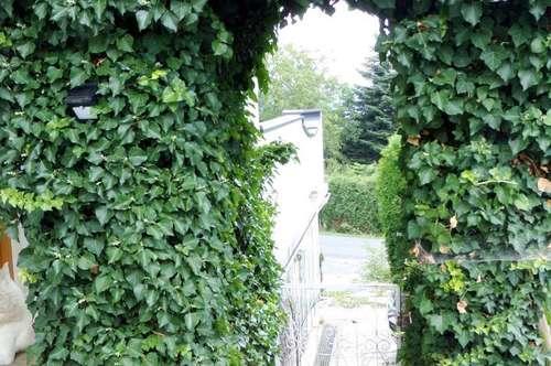 Geräumiges Einfamilienhaus (112m²) mit uneinsehbarem Garten in ruhiger, erhöhter Lage Nähe Fürstenfeld!