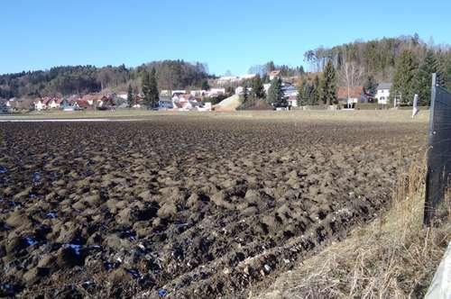 Sonnig gelegener Gewerbegrund (22.791m²) in Toplage in der Nähe von Gleisdorf!