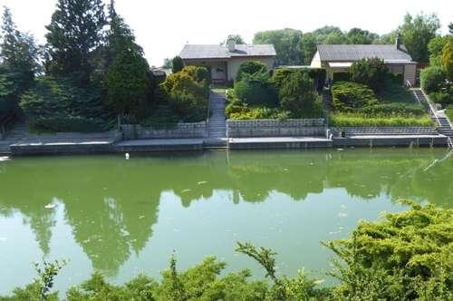 Ihr Haus am See - Urlaub oder ganzjährig Wohnen im Marchfeld