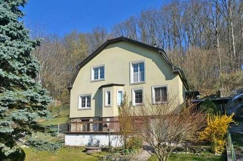 Lichtdurchflutetes Einfamilienhaus in Waldrandlage