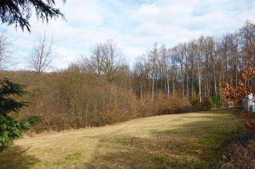Großzügiger Baugrund in Waldrandlage nahe Gablitzer Zentrum