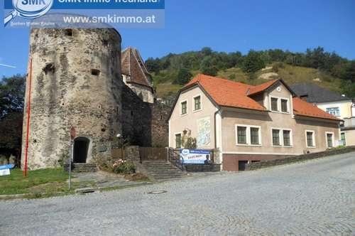 Heuriger mit Wohnhaus an der Donau! - St. Michael in der Wachau!