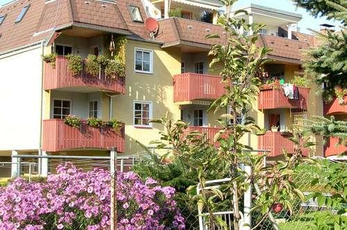 Gresten. geförderte 3 Zimmer Wohnung | Dachterrasse | Mietwohnung.