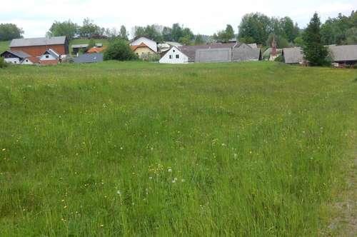 Bauparzellen in ländlicher Grünlage