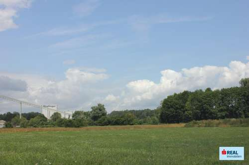 Günstige Betriebsbaugründe in Amstetten-Nähe!