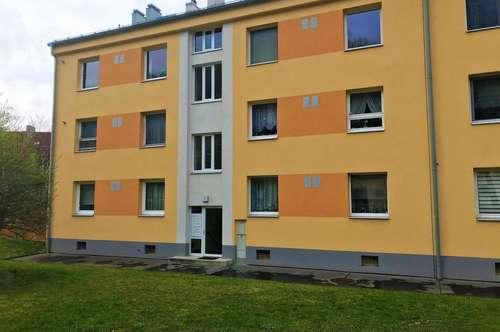2103 Langenzersdorf, drei Zimmerwohnung am Fuße des Bisamberges