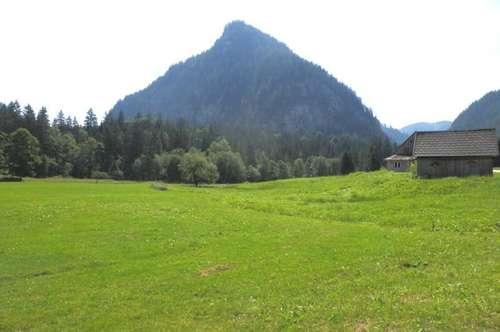 BAURECHT: Sonnige und ruhige Lage - großes Landhaus zwischen Mariazell und Wildalpen!