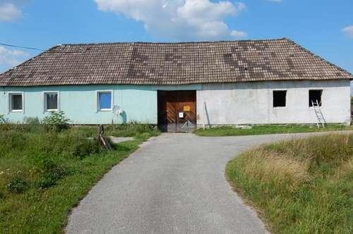 Sanierungsbedürftiges Bauernhaus in Ruhelage nähe Heidenreichstein