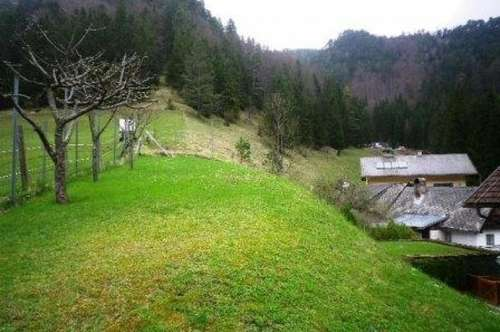 Gutenstein, Einfamilienhaus in Ruhelage