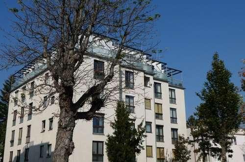 2500 Baden, 3 Zimmer Wohnung in Zentrumslage