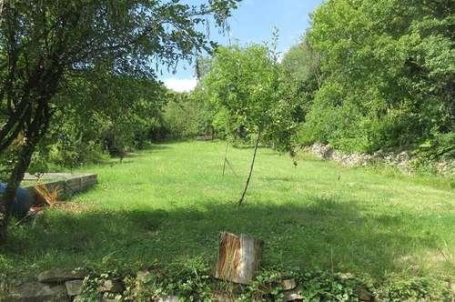 Grundstück mit Altbau