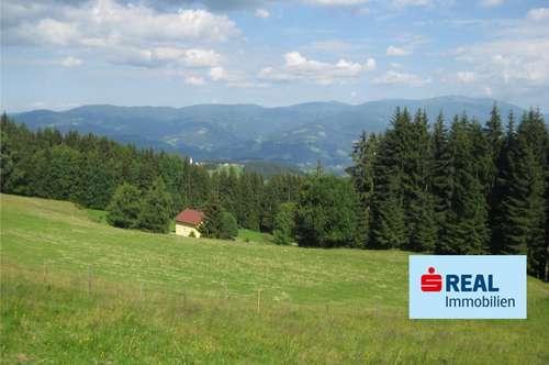 Almluft genießen - sonniges Grundstück auf der Lavanttaler Seite der Saualpe