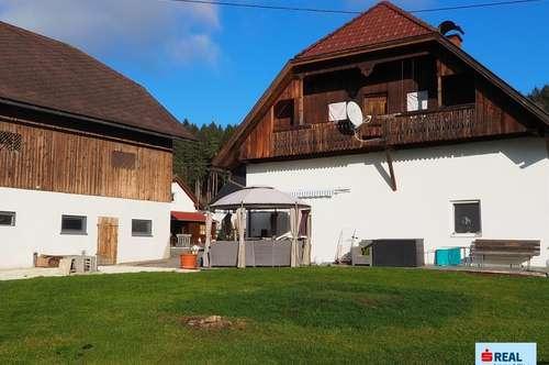 Bauernhaus mit großem Wirtschaftsgebäude Nähe St. Andräer Badesee