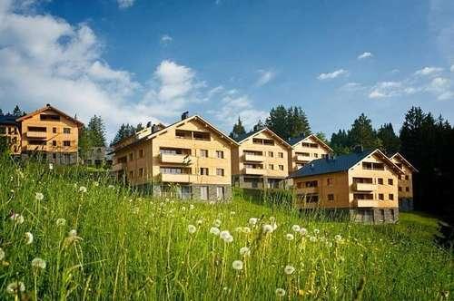 Immobilieninvestment und Feriendomizil: Penthouse im Ferienpark Brandnertal