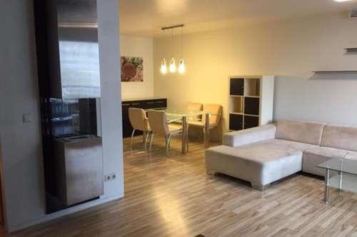 außergewöhnliches, teilmöbliertes Apartment mit Loggia; Pool am Dach zur Mitbenü