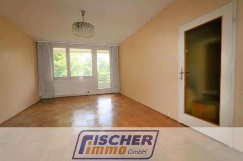 Geräumige 2-Zimmer-Wohnung im 2. Liftstock mit ostseitiger Loggia und uneinsehbarem Grünblick/1