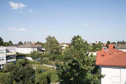 Baden bei Wien: Haus auf drei Ebenen: 5 Schlafzimmer + 3 Bäder und 2 Küchen + Werkstatt + Keller + Garten