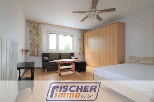 Gepflegte 1-Zimmer-Pendlerwohnung (möblierte Singlewohnung) in Ruhelage/3