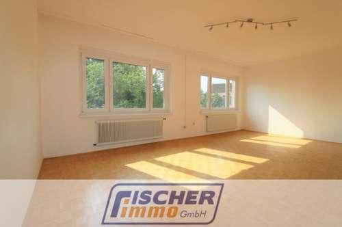 Geräumige 3-Zimmer-Wohnung im Zentrum/166