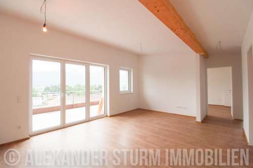 ERSTBEZUG | 4 Zi.-Penthouse mit XXL-Panoramaterrasse