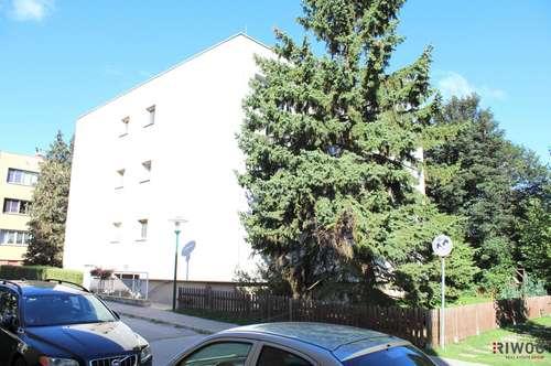 Entzückende Wohnung in Grünruhelage 5 min von Wien