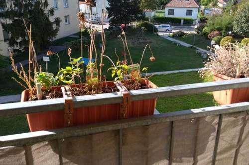 Schwechat: Top gepflegte 3 Zimmer Hauptmiete mit Loggia und Garagenabstellplatz