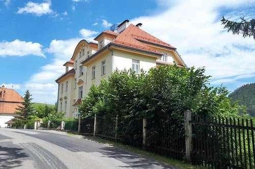 Kaiserliche Wohnung mit historischen Details u. Ausstattung. Die Wohnung befindet sich in unvergleichlichem K&K Juwel -NEU SANIERT, Obj. 12465-CL