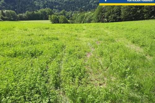Landwirtschaftliche Grundstücke - Äcker