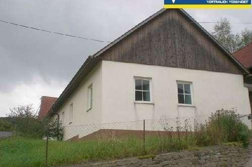 Teilsanierter Bauernhof