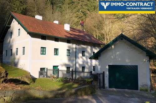 Wunderschönes Wohnhaus mit Geschichte und sanierter alter Schmiede!