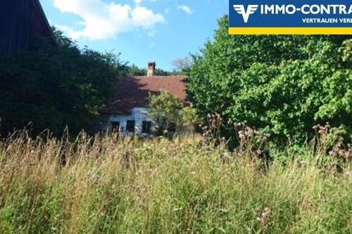 6,6 ha landwirtschaftlicher Grund + altes Bauernhaus mit Stadel