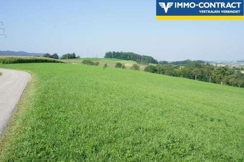 Ca. 7ha landwirtschaftliche Grundstücke - Äcker und kleiner Wald