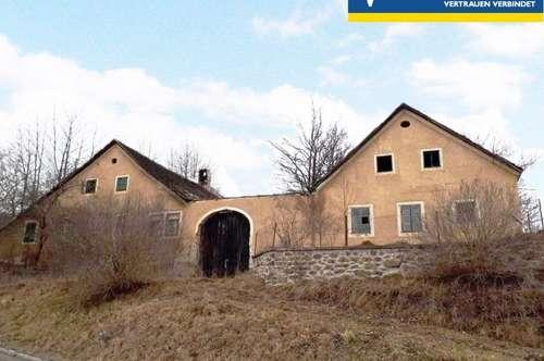 Bauernhaus - Abrissobjekt - Baugrund - Preisreduktion!