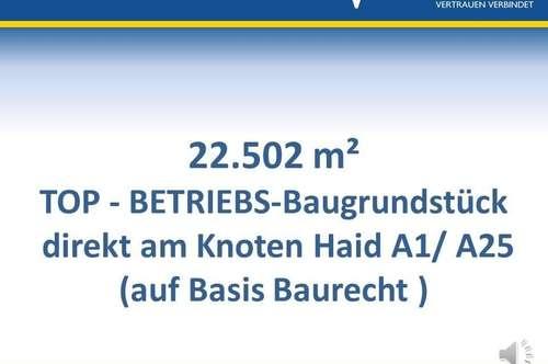 Top-Betriebs-Baugrund - Knoten Haid