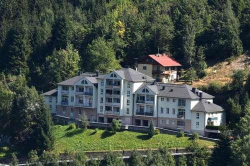 Schöne 2-Zimmer Wohnung mit Blick über das Gasteinertal