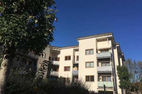 Großzügige, geförderte 2-Zimmerwohnung mit Loggia! Mit hoher Wohnbeihilfe oder Mietzinsminderung