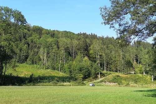 Waldgrundstück, leicht erreichbar, ruhige Flußlandschaft