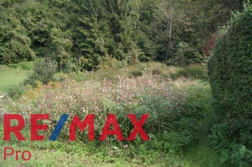 700 m² Baugrund mit angrenzendem 5296m² Wald