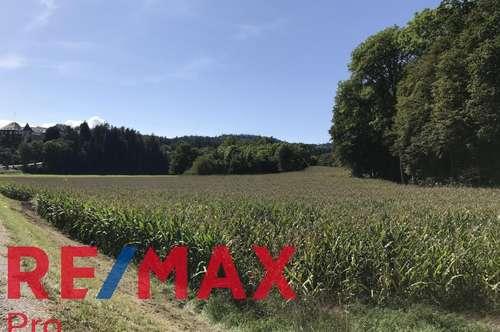 PROVISIONSFREI Landwirtschaftliche Flächen