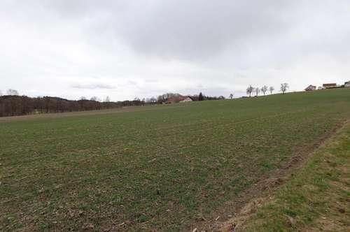 Landwirtschaftlicher Nutzgrund, Ackerfläche
