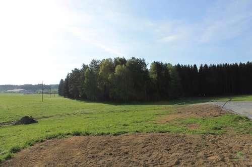 Baugrundstück in ländlicher Umgebung
