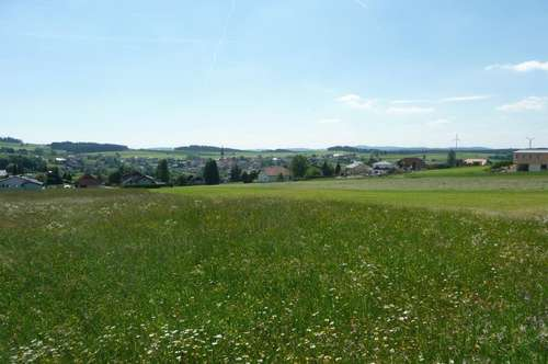 4 sonnige Grundstücke in Siedlungslage