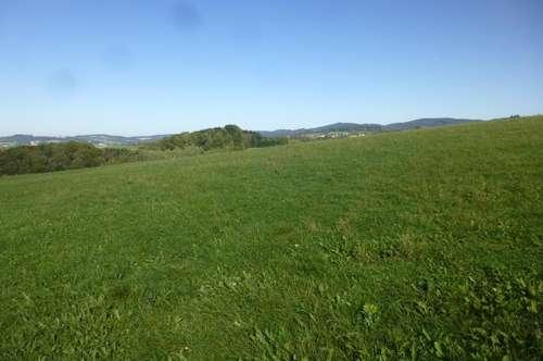 Landwirtschaftlicher Nutzgrund in Engertsberg
