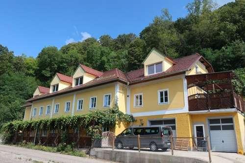 Weingarten und Winzerhaus in Südlage