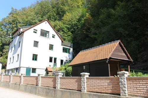 Ein- / Mehrfamilienhaus in Puchenau