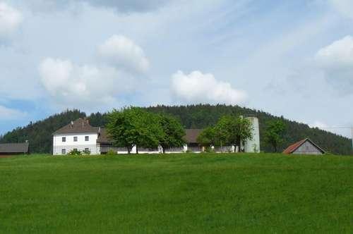 Vierkanthof in ruhiger, sonniger idyllischer Lage samt Wald und Wiesengrund