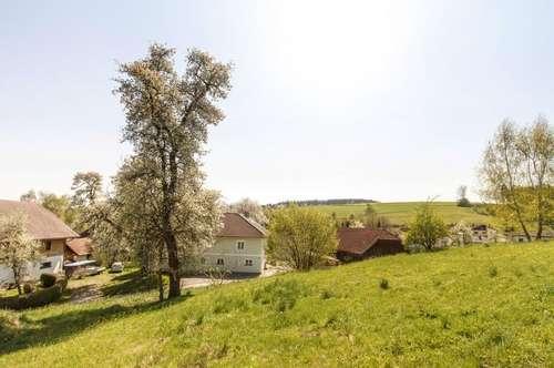 Baugrund in Oberndorf - Lebertsham
