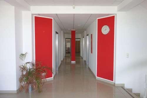 Bürohaus mit Lager und Ausstellungsfläche