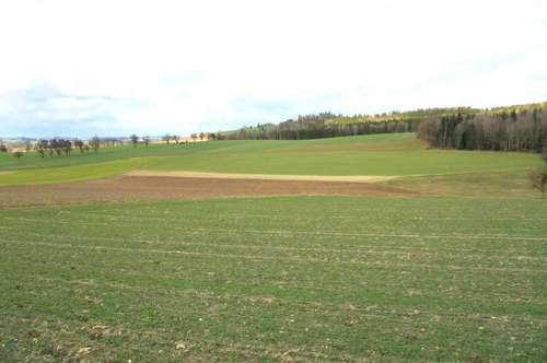 6 Baugrundstücke in Aistersheim
